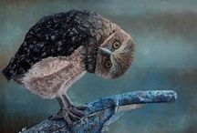 """Wise Owl  / (Cailleach, Oidhche, Comachag) The word """"cailleach"""" in the Scottish-Gaelic means old woman!, """"coileach-oidhche"""" is the word for owl, believe it or not it means """"night-cockerel""""! These birds were most often associated with the Crone aspect of the Goddess. The owl is often a guide to and through the Underworld, a creature of keen sight in darkness, and a silent and swift hunter. It can help unmask those who would deceive you or take advantage of you."""