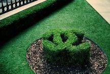Chanel garden