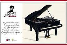 Comunications / campagne promozionali del Puccini Museum