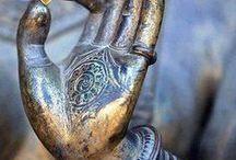 Hands / Verhalend, omvattend, koesterend, liefhebbend, spelend, beschermend, werkend.....