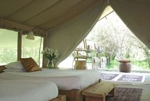 Glamping ideas
