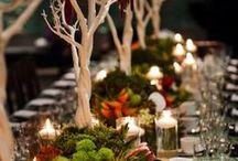 Dream wedding that will never happen / by Kalia Klein