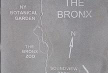 Bronx Neighborhoods