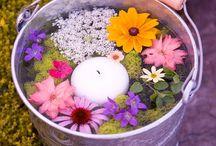 Jardins&Flowers