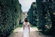 olive branch wedding design / Elegance and simplicity of Tuscan wedding decorations