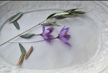 saffron wedding | san gimignano / saffron crocus inspired color palette for a destination wedding in Tuscany