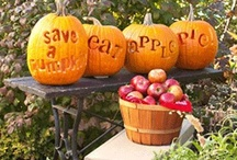 Autumn, Apples, Halloween & Hayrides / by Michelle (simplyseashell.com)