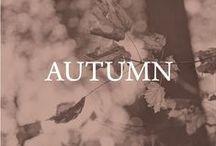 autumn / by Left on Houston