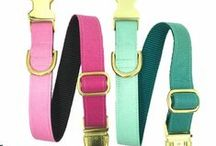 Dog Collars / Dog Collars by K9 Couture Co