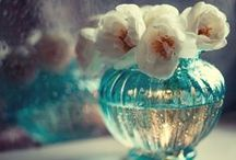 flower/Svoboda Andreeva . / foto by Svoboda Andreeva .