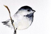 Birds & Art