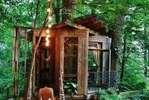 Thrilling Treehouses / Selection of the coolest treehouses in the world