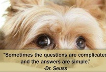 Dsignhaus Quotes / Quotes to inspire and uplift .... with a beautiful picture, of course!!!  If you would like to see what else we do, please visit our website dsignhaus.co.za.