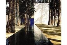 Water / by Joeke Monteiro