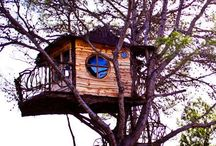 My treehouse infatuation