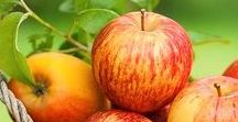 Fruits / Owoce