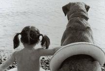 Animalitos / Nos encantan los animalitos