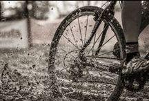 Cyclocross! Cyclocross! Cyclocross! / We just love Cyclocross!
