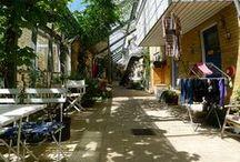 Architecture: cohousing