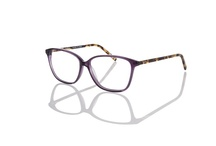 Eco Optics by MODO / by MODO Eyewear