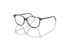 Eco Optics by MODO / by MODO Eyewear