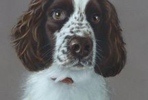 My Art / A few of my pastel animal portraits, watercolours, and others