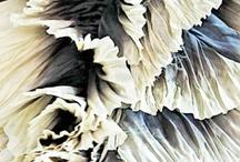 Interesting textile texture