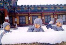 * CHINA | HENAN PROVINCE / Ali's Travels