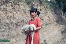 * CHINA | AR - NINGXIA HUI / Ali's Travels