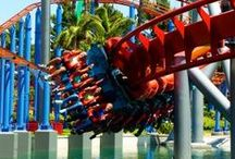 Theme Parks / The many theme parks in Orange County and the surrounding area allow you explore magical new worlds, discover movie backlots and get up-close and personal with the characters of your childhood.
