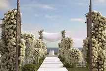 OC Weddings & Venues / What do you get when you combine near-perfect weather, sand, the ocean, Disneyland and tons of beautiful hotels and resorts? The perfect wedding destination! With plenty of options and stunning locations, Orange County, CA can make your wedding dreams come true.  / by Visit Anaheim