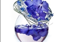 Blue Flowers / beautiful blue flowers to admire and inspire