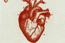 coup de cœur / Love is the answer
