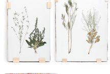 Pflanzen | DIY & Hacks