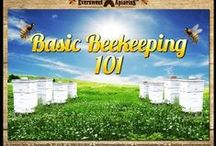 Honeybee & Beekeeping Education / Various info & topics about honeybee & beekeeping education.