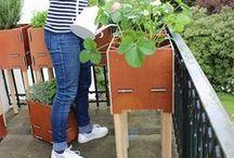 destinature – pures Gärtnern / Garten zu klein? Kein Platz mehr auf dem Balkon? Kein Problem! Bei den neuen Blumenkästen von Werkhaus wachsen nicht nur die Pflanzen in die Höhe. Dank flexiblem Steck- und Stapelsystem können Kräuter, Gemüse oder Zierpflanzen gleich auf mehreren Etagen blühen und gedeihen. Das gibt Ihnen jede Menge mehr Platz zum Pflanzen und Begrünen – ob auf dem Balkon, der Terrasse oder im Hof.