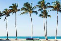 Off to the Beach! / Everbody's gone surfin' - und wer gerade keine Zeit oder keinen passendes Fahrzeug für das Beach Campn hat, dem bringt Werkhaus ein wenig passendes Flair nach Hause. Let's ride the waves!