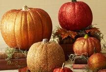 Harvest Pumpkins / by Jane Morrison