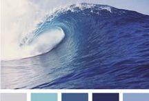 14 | colour palette