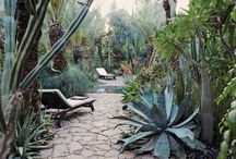 outdoor spaces / None / by Rachel Saldana