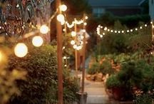 Backyard Inspiration / by Devon Rohrer