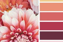color combos / a board for pinning beautiful color palettes for keeping life lovely