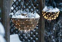 winter / by Suzi Humphreys