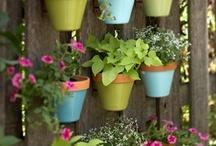 gardening / by Wanda Visconti