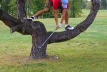 All things Golf / Golf / by Wanda Visconti