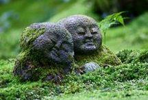 garden - Japanese - zen