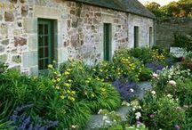 garden - English cottage