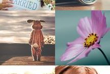 Free Photo & Font Sites / Free and/or royalty free stock photo websites #stockphotos #photos #blogging #fonts #design