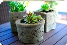 garden - pots & containers