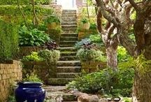 garden - walkways and steps
